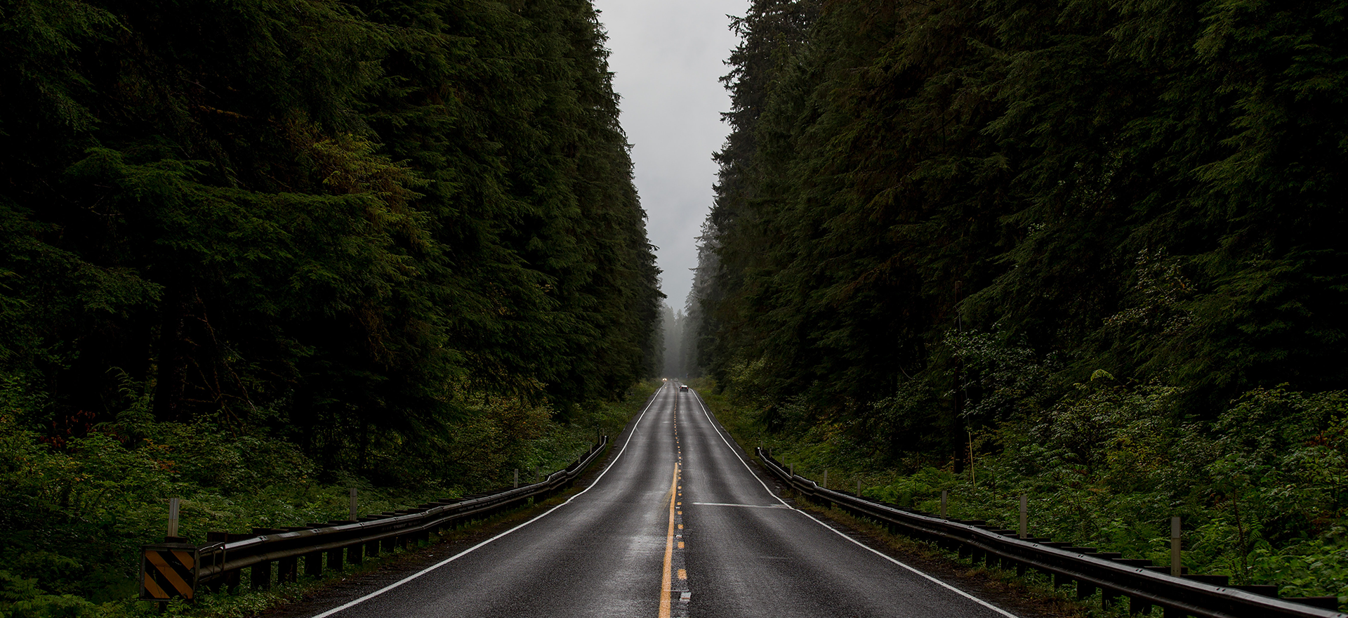 Dark, moody image. A grey road between dark green pine trees with an overcast sky.